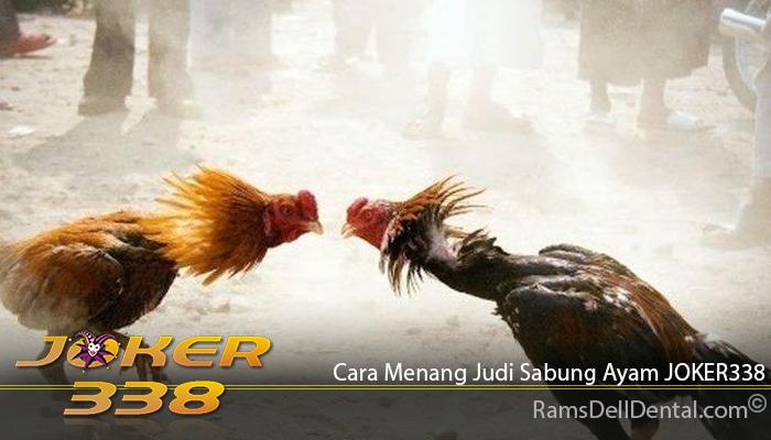 Cara Menang Judi Sabung Ayam JOKER338